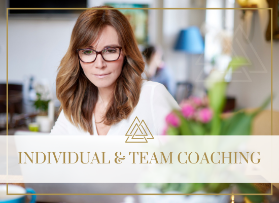 Individual and Team Coaching
